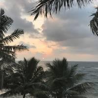 スリランカ(光り輝く島)に 軽く触れてみた。5泊6日の旅