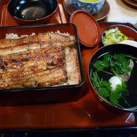 世田谷グルメ・散歩 2009/12/14-2010/01/10