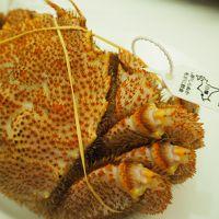 2017年1月 毛ガニを食べに札幌へ!