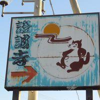 狸ばやしの舞台である證誠寺と木更津駅前のみまち通りをぶらぶら