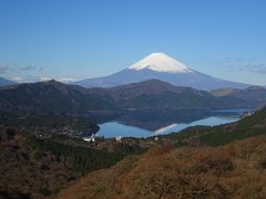 富士山展望スポットをめぐる旅(薩埵峠、浜石岳、三保松原、芦ノ湖、大観山)