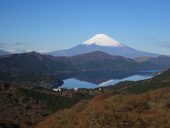 青春18きっぷを使って土日の旅。出発当初は全く違う計画でしたが、静岡駅付近から富士山が綺麗に見えたので、急遽予定を変更。静岡と箱根の富士山展望スポットを巡ってきました。<br /><br /><過去に訪れた富士山展望スポット><br />金時山(2013.12)<br />http://4travel.jp/travelogue/10842404<br />新倉山浅間公園(2014.02)<br />http://4travel.jp/travelogue/10862141<br />高川山(2014.04)<br />http://4travel.jp/travelogue/10874319<br />富士芝桜まつり、河口湖、竜ヶ岳(2014.05)<br />http://4travel.jp/travelogue/10889062<br />九鬼山(2014.12)<br />http://4travel.jp/travelogue/10961924<br />丹沢、愛鷹山(2015.12)<br />http://4travel.jp/travelogue/11086737