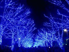 '16 三軒茶屋 かき氷めぐり~渋谷 青の洞窟~表参道イルミネーション