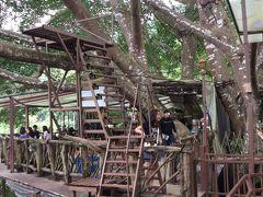 タイ専科 -40-  San Kamphaeng Hot Springs & The Giant Chiangmai