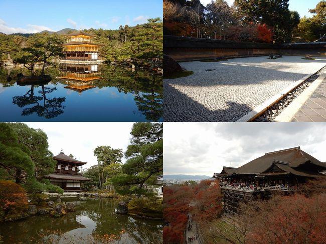 日本を代表する観光地である京都はゆっくりと見て回るのが常識だが、時間があまりとれず、日帰りしなければならない場合、1日でどれだけ回れるかの計画をたててみた。<br />各観光地はあまりじっくりと見ずに、とにかく数をこなすことを目的とした。<br /><br />時間を有効活用するために、夜行バスにて早朝に京都入り。<br />現地での主な交通手段はバス。