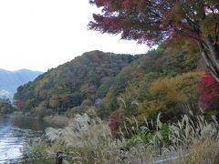晩秋の優雅な伊豆と富士五湖 愛犬セレブの旅♪ Vol22(第4日目) ☆河口湖:秋の河口湖を眺めて♪
