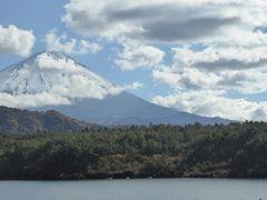 晩秋の優雅な伊豆と富士五湖 愛犬セレブの旅♪ Vol23(第4日目) ☆河口湖:秋の西湖を眺めて♪
