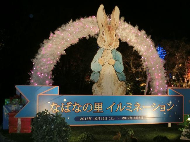 近所の人たちと貸し切りバスを頼んでなばなの里のイルミネーションと木曽三川公園のイルミネーションを観に行って来ました。<br /><br />タクシー会社(観光バスもあり)で20人乗り程度のマイクロバスを運転手さん付きでレンタルして行きたいところの計画を立てて連れて行って貰います。<br /><br />午後2時前の出発で夜8時頃まででしたが、バス代45000円で10人の参加だから、4500円です。<br />なばなの里の入園券は、1000円の金券付きで2300円ですので、1人6800円です。<br />旅行会社のバスツアーもありますが、家の側からの出発で行きたいところだけ連れて行って貰えるので格安になりました。人数がもっと増えればもっと安くなりますね。<br /><br />天気予報では、この1週間、ずっと朝からの雨マークでしたが、晴れ女の私の威力は、今回も活躍したようで、3時前後に入園してベゴニアガーデンなどを見て回り、4時半頃に食事をして5時過ぎからイルミネーションを見たのですが、雨は降らなくて、傘は、かばんの中…。<br /><br />6時過ぎになばなの里の外に出てバスに乗る頃にと雨がポツリポツリと…。<br />イルミネーションで傘の花が咲いていたら嫌だなと話していたのに全然降られなかったです。<br />もともと私は、傘を差すつもりもなく降らないだろうと思っていましたけどね。<br /><br />雨予報だったおかげで個人客は、減ったのか、貸し切り状態で楽しめましたよ。帰りの駐車場を見るとバス会社のバスが、10数台停まっていました。バスツアーは、中止に出来ないものね。<br />いいタイミングで行けたねって話していました。<br /><br />帰りに海津市にある木曽三川公園のイルミネーションも観て来ました。ここもとても綺麗でした。<br />雨が降ったおかげで地面の水たまりもイルミネーションが写って綺麗でした。<br />ここは、傘があっても気にならなかったです。雨で6時半頃だったので人影もまばらでしたしね。<br />でも予報では、強い雨って言ってたみたいですが、気になるような雨じゃなかったです。<br /><br />