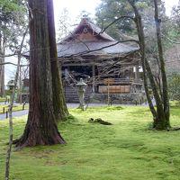 自分好みの京都の旅