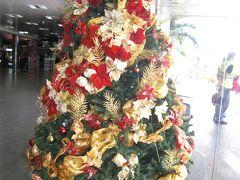 ベネズエラ、クリスマスツリ-