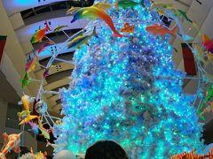 みなとみらいのクリスマスはキラキラ !!