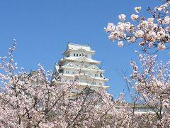 2015/04 桜満開 姫路城・大阪城・京都