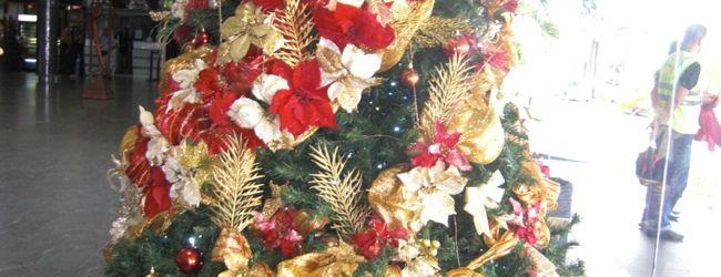 ベネズエラ、クリスマスツリ−