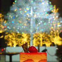 東京で・・・気の向くままに・・・☆キラ☆キラ☆クリスマス☆のまち歩き  §上野~日比谷~丸の内、紀尾井町§