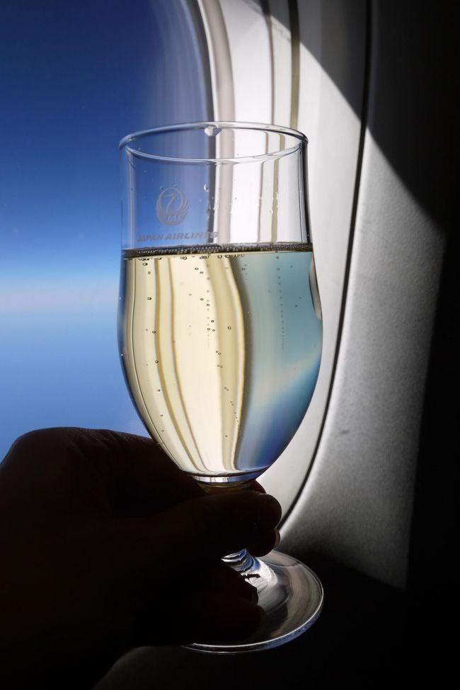無料航空券で年末マドリード旅行 その1 JALビジネスクラスでの出発編①まずはロンドンまで