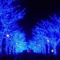 """東京渋谷・国内初の""""マリメッコ展""""~話題の""""青の洞窟 SHIBUYA""""を訪れて"""