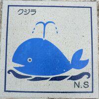 東京から南へ1000キロ!小笠原諸島漫遊記・その7 母島‥えっなに?滞在2時間なのに感動だよ。