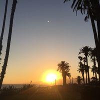 ロサンゼルス観光~サンタモニカ、ビバリーヒルズ、ハリウッド~-ラスベガス、ロサンゼルスの旅⑤-
