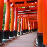 そうだ・・・師走だ、京都行こう。パート1
