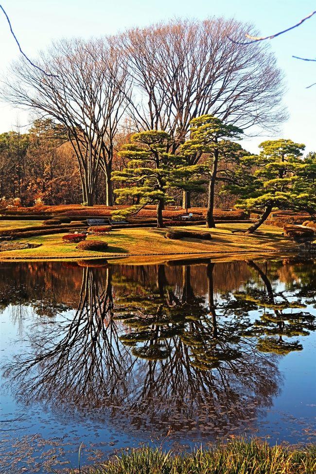皇居東御苑(ひがしぎょえん)は、東京都千代田区の皇居の東側に付属している広さ約21ヘクタールの庭園。宮内庁の管轄。皇宮警察がある。<br />当地はかつての江戸城の本丸・二の丸・三の丸跡に位置し、少し離れた場所の西の丸を含めた、この範囲のことを江戸城といった。<br />明治時代から戦前までは宮内庁や皇室関連の施設があった。戦後の1963年に特別史跡に指定され、1968年10月1日から一般に公開されるようになった。<br />苑内は緑豊かな雑木林に日本庭園や皇室関連の施設、江戸城の遺構など歴史的な史跡も見ることができ、国内のみならず海外からの旅行者も多く訪れる。2014年7月27日、開園以来の来場者数が2500万人を達成。<br />(フリー百科事典『ウィキペディア(Wikipedia)』より引用)<br /><br />皇居東御苑 については・・<br />http://www.kunaicho.go.jp/event/higashigyoen/higashigyoen.html<br /><br />平川橋    内濠に架かり、一ツ橋一丁目から皇居東御苑に入る平川門前の木橋です。初めは慶長19年(1614)に架けられましたが、その後しばしば改修が行われました。現在の橋は昭和63年3月31日に改架された姿の美しい木橋(台湾ひのき製、橋脚と橋台は石、脚桁は鉄骨)で、長さ29.7m、幅7.82mです。平川門は、江戸城三丸の正門でした。<br />  <br /> 死者・罪人を運ぶので不浄門、奥女中の通用門であったのでお局御門の名もありました。また、田安・一橋・清水の徳川三卿の登城口でもありました。門・枡形も現存しています。 <br />(http://www.kanko-chiyoda.jp/tabid/768/Default.aspx より引用)<br />