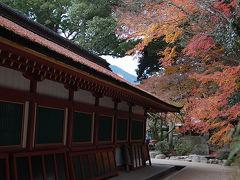 秋月散策と太宰府天満宮参拝 (2泊3日大分・福岡旅行3日目)