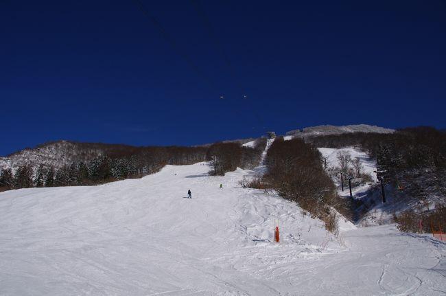 2016年12月29日(木)~30日(金)に新潟県のスキー場へ行きました。新幹線利用での1泊2日でスキー場2つ行ってみようと考えました。<br />1日目は「六日町八海山スキー場」へ、2日目は「神立高原スキー場」へ行きました。<br />宿泊は越後湯沢の「ホテルやなぎ」に泊まりました。<br />両スキー場ともバスでのアクセスが容易でした。「ホテルやなぎ」は越後湯沢駅東口のすぐ近くでした。行程は順調で、問題無かった。<br />直前まで雪不足が心配でした。<br />1日目の「六日町八海山スキー場」は雪不足で、下部7割くらいクローズで、上部の一部のみ滑走可能でした。良い天気で、眺望が素晴らしかった。<br />お客さんが程々で、のどかな雰囲気でした。上部だけのオープンでしたが、十分楽しめました。<br />2日目の「神立スキー場」は大雪で、雪は十分でした。ちょっと寒かった。お客さんが大勢来ていて、賑わっていました。大規模なスキーリゾートで、充実していました。上級コースがお客さんが少なく、降雪のお陰で、良い雪でした。