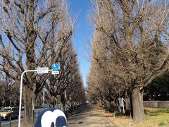 グーちゃん、大江戸線をウォークする!(グー散歩①/新宿から青山へ!編)