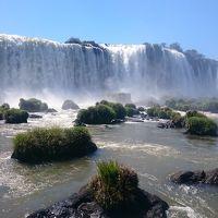 アルゼンチン縦断旅行その8-イグアスの滝(ブラジル側)とバードパーク