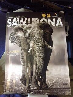 普通の旅に飽きたら....やっぱ、アフリカ ....#1(南アフリカ共和国/アフリカ)