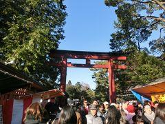 氷川神社 初詣 さいたま新都心 イルミネーション