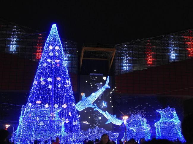 皆さま、あけましておめでとうございます!<br />今年もどうぞよろしくお願い致します<br /><br />さて、新年早々ですが、相方と同じ一月誕生日な我々は今年もバースデーチケットでユニバ旅行に行ってきました!!<br /><br />今回は1日朝から夜までユニバを楽しむために二泊三日の大阪旅にしました<br />行きは11時の新幹線、帰りは3時半の新幹線とのんびり旅です!<br /><br />初日は、海遊館<br />2日目はユニバ<br />三日目は大阪城となります<br /><br />こちらは初日海遊館編です