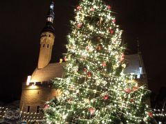 初めての北欧フィンランド旅行は、寒さの我慢大会?! -Part II- クリスマスマーケットを期待してエストニア・タリンへ日帰り旅行♪