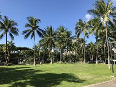 正月ハワイへタダで飛んで到着後に何をしたかと言うと…