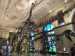 2016年夏(14)ウィーン滞在 自然史博物館NHMと美術史美術館KHMを訪ねる