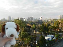 『旅亭 松屋本館 SUIZENJI』宿泊記◆2016年1月/熊本・天草の旅≪その2≫