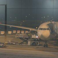 ロシア・南ドイツ 観劇の旅 ① トルコ航空Cクラス 関西→イスタンブール