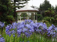 初夏の花々がお出迎え~2017年始の初ニュージーランド旅①