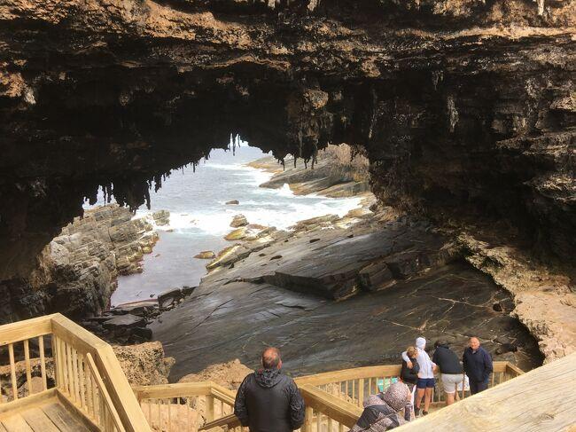カンガルー島→アデレード夫婦旅行 4日目(Flinders Chase National Park)
