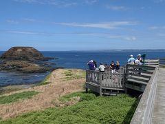 ペンギンの島フィリップ・アイランドとワインの里ヤラ・バレーを訪問