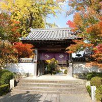 奥津和野の山里にある旧家の庭園を訪ねて   ( 津和野からの帰りに山口市で途中下車 )  �