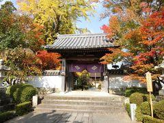 奥津和野の山里にある旧家の庭園を訪ねて   ( 津和野からの帰りに山口市で途中下車 )  ③