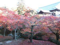 京都紅葉めぐり (2)