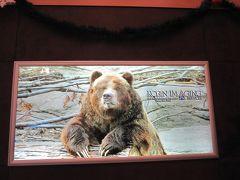 2016~2017 年末年始は初・アラスカでオーロラを見たいね~!その1