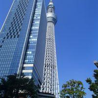 『JALで伊丹→羽田』&『リッチモンドホテルプレミア東京押上』宿泊記◆スヌーピーミュージアムに行くため東京へ《その1》