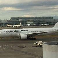 羽田空港国内線JALラウンジ潜入