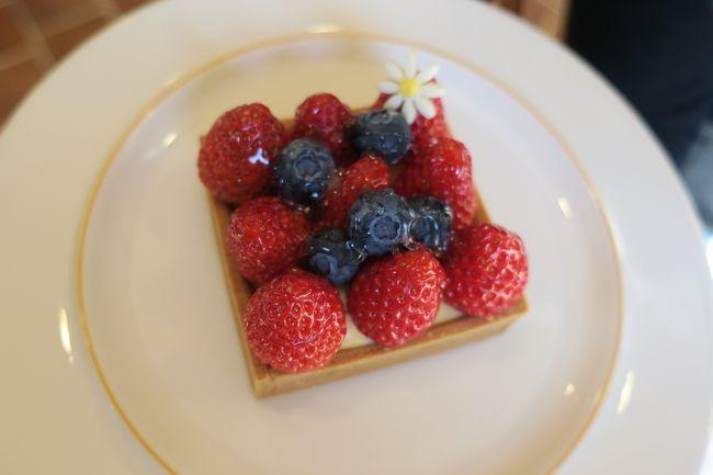 三重と岐阜のケーキ屋さんへ行ってきました