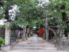 2015秋、菊井の金刀毘羅神社:9月22日::鳥居、鎮守の杜、参道、手水舎、舞殿、本殿、狛犬、稲荷社、百度石
