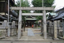 2015秋、泉の松山神社:9月21日:鳥居、石灯篭、狛犬、拝殿、長寿公孫樹、福守稲荷社