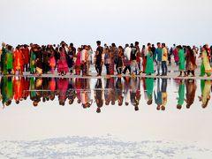インドに翻弄された2016♪年末★グジャラート州カッチ県~Great Rann of Kutch