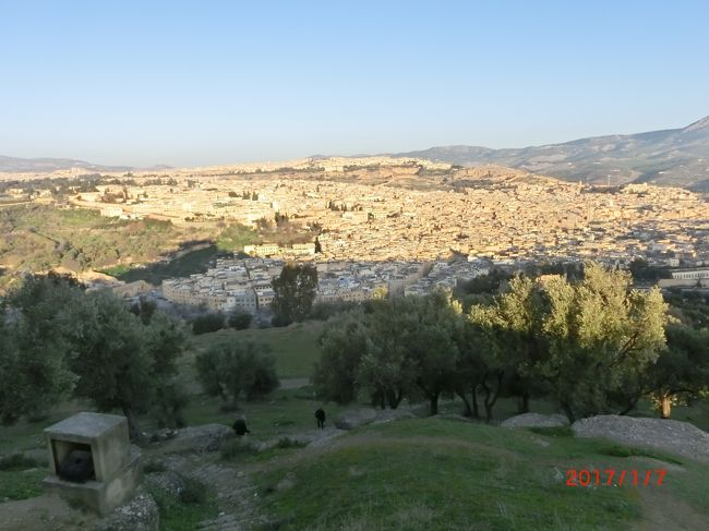 初アフリカはモロッコ6泊周遊ツアー(No3. フェズ)<br />旅物語でエアーフランス、パリ経由、カサブランカ往復。<br />モロッコを観光バスで時計回りに1周しました。<br />観光ルートはラバト、シャウウェン、フェス、イフラン、<br />メルズーガでサハラ砂漠、カスバ街道・トドラ渓谷、アルザザード、<br />アイト・ベンハッドゥカスバ、マラケシュ、カサブランカです。<br /><br />3か所目の観光地フェズには1泊しました。<br />ホテル AL MOUNIA には夜7時半に着きそれから夕飯でした。<br />翌朝2時間の観光をしました。<br />世界遺産の象牙色の迷宮 FEZ EL BALI を2時間観光しました。<br />店の屋上からタンネリーを見ました。<br />凄い臭いでした。<br /><br />スーク:市場、カスバ:要塞、クサル:要塞化された村、ハマム:公衆浴場、メディナ:旧市街、ミナレット:モスクの尖塔、マドラサ:神学校、サラート:礼拝、アザーン:呼びかけ、リヤド:中庭を持つ宿、パスティラ:伝統料理、キャラバンサライ:隊商宿